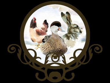 volailles-lapins-charcuterie-fine-amiens